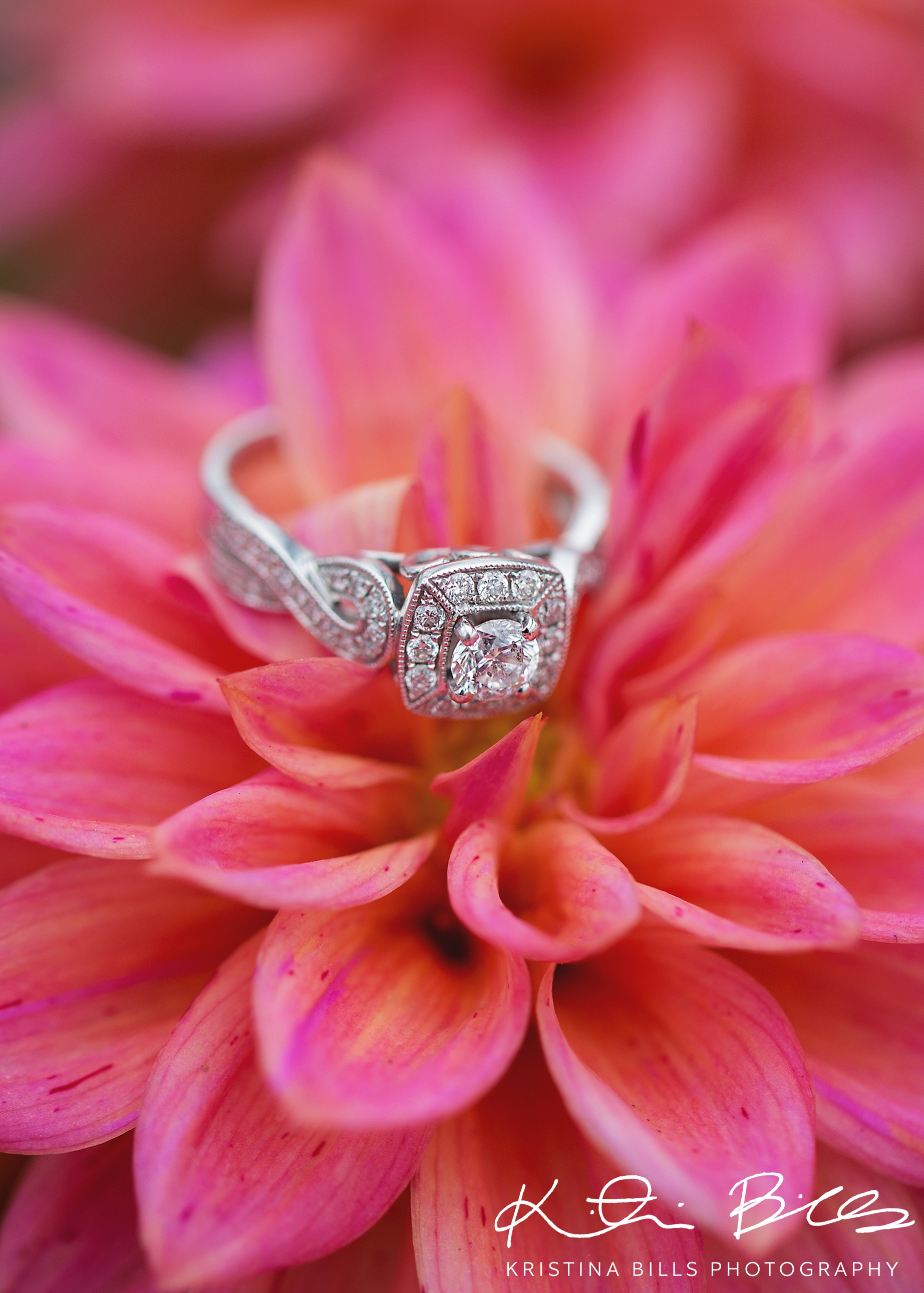 Her ring is GORGEOUS and this flower, I LOVE! In fact I will probably go back and buy a few of these for my yard. Totally in love!