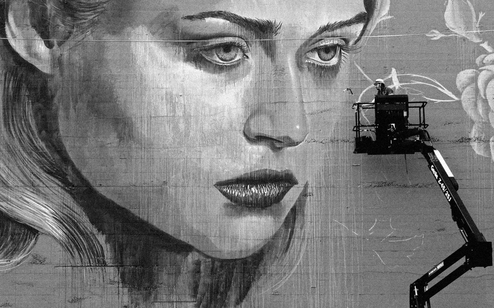 2013 Mural progress by Rone courtesy of Forest for the Trees
