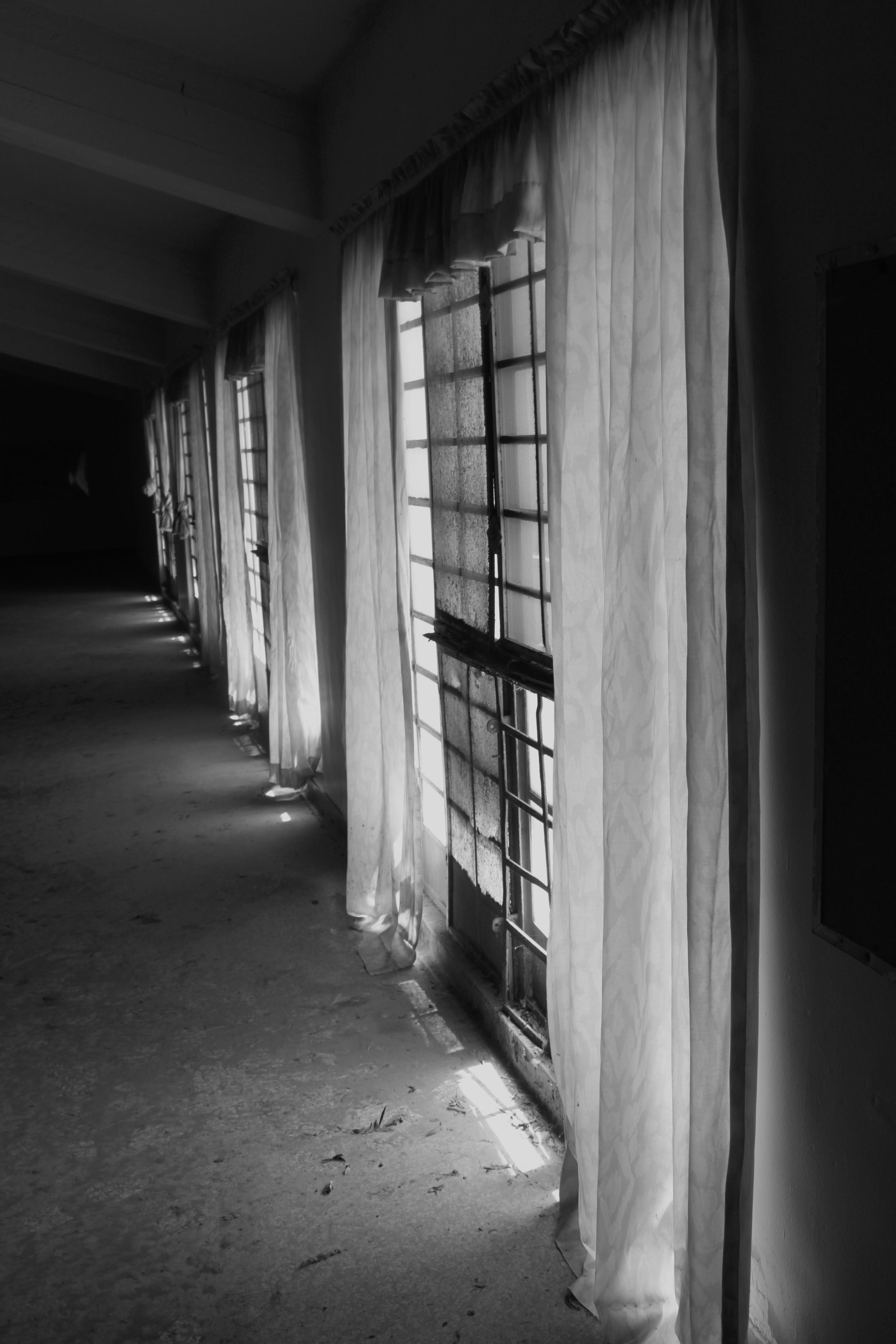 ChrisAlexakis_Windows.JPG