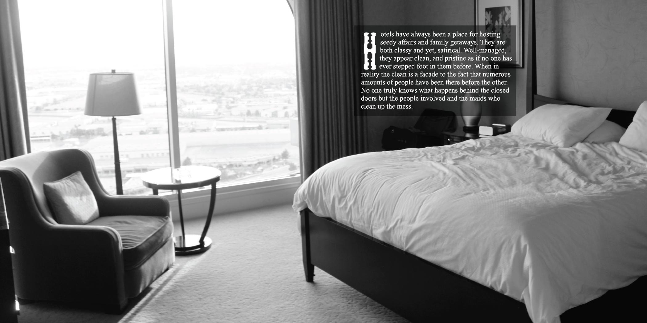 ChrisAlexakis_HotelBook6.jpg