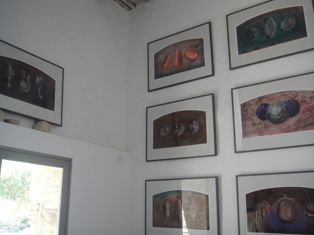 Gallery with Seeds exhibition, 2011