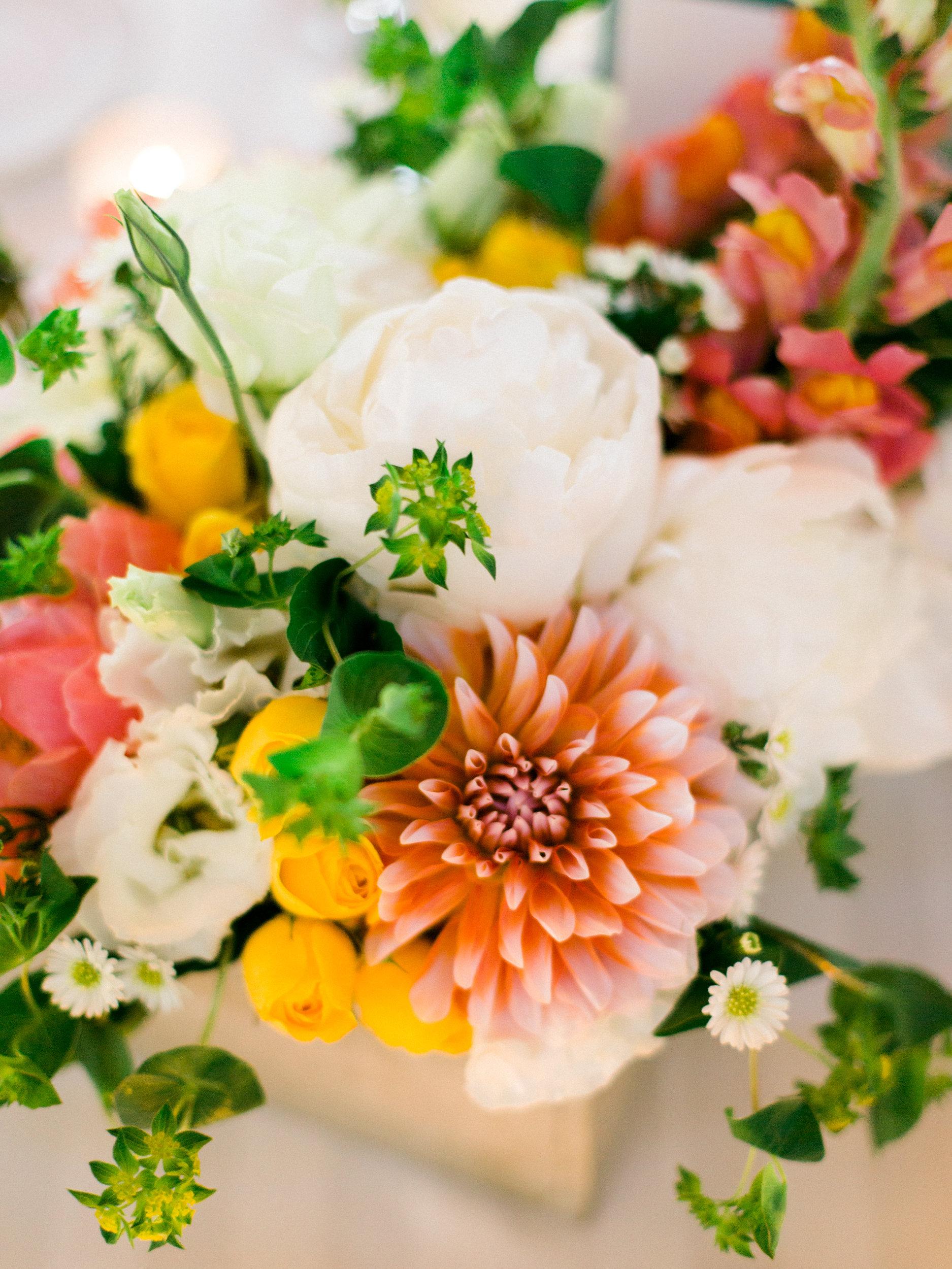photography:liveviewstudios.com