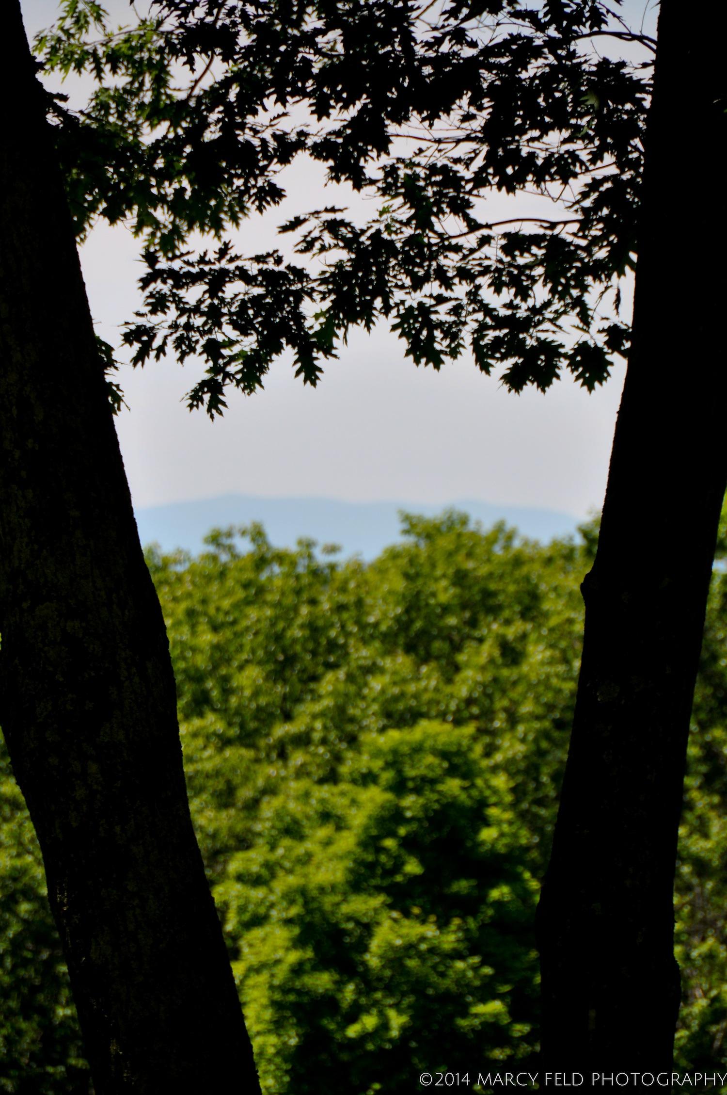Western View Toward the Catskills