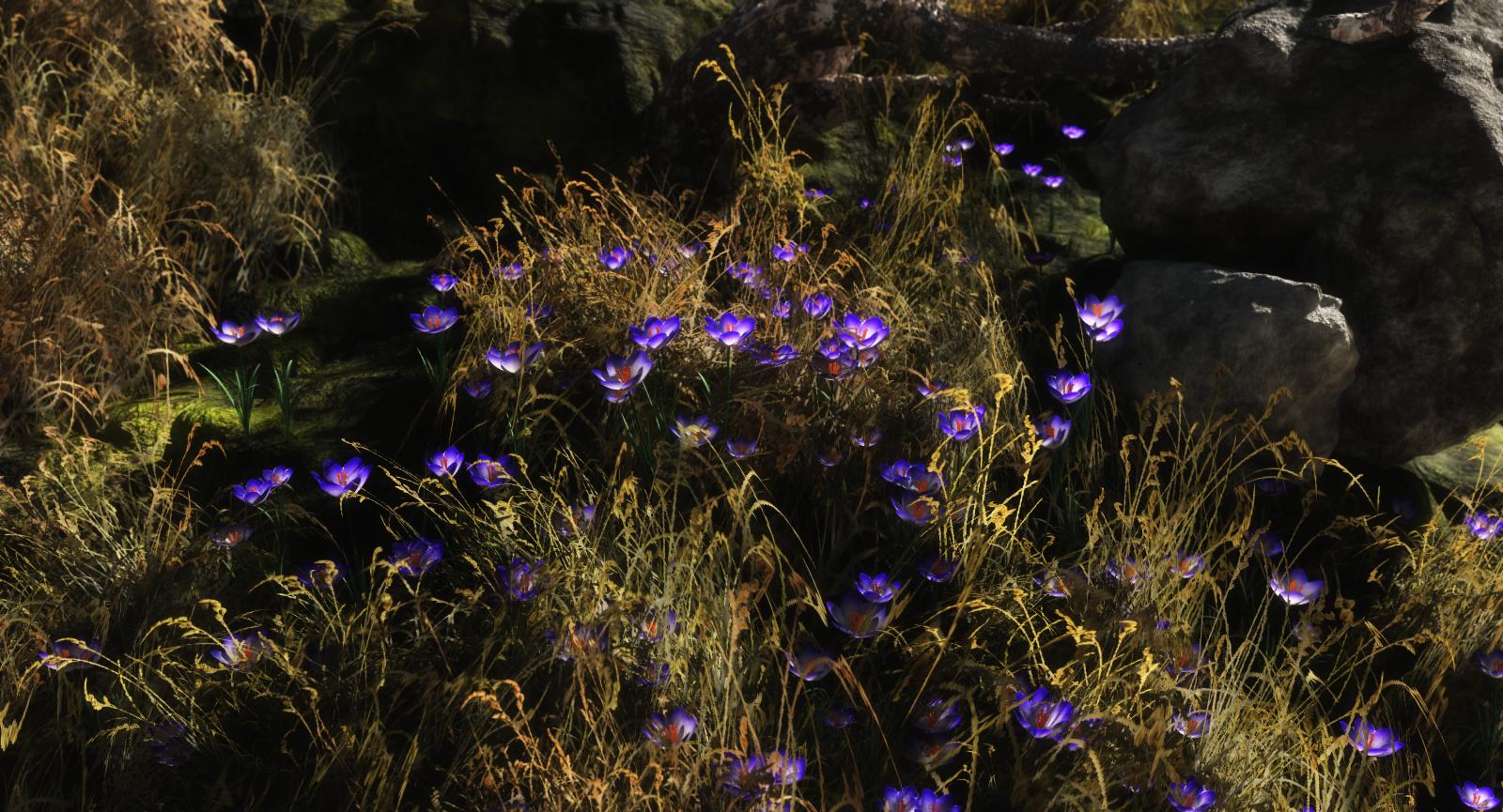 Flower Field.png