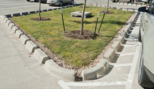 Curb cuts such as these are the poster child for integrated storm water management, so why not just go curbless?