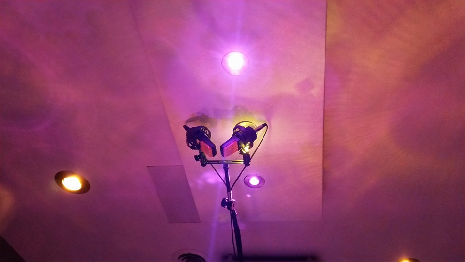 Red Cat's Stereo Overhead Array, matched pair of AKG C414s