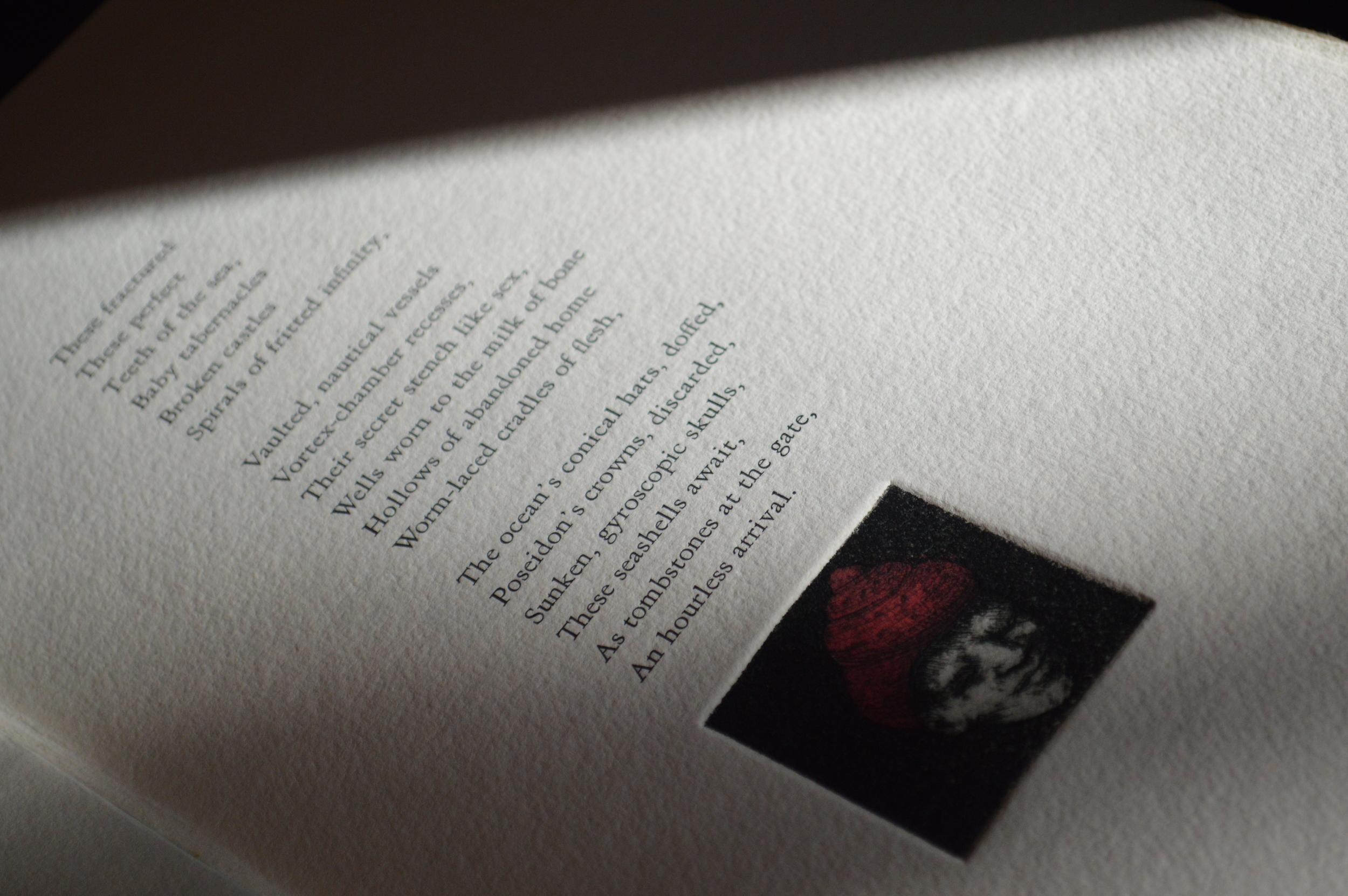 amour_poem_wide1 copy.jpg