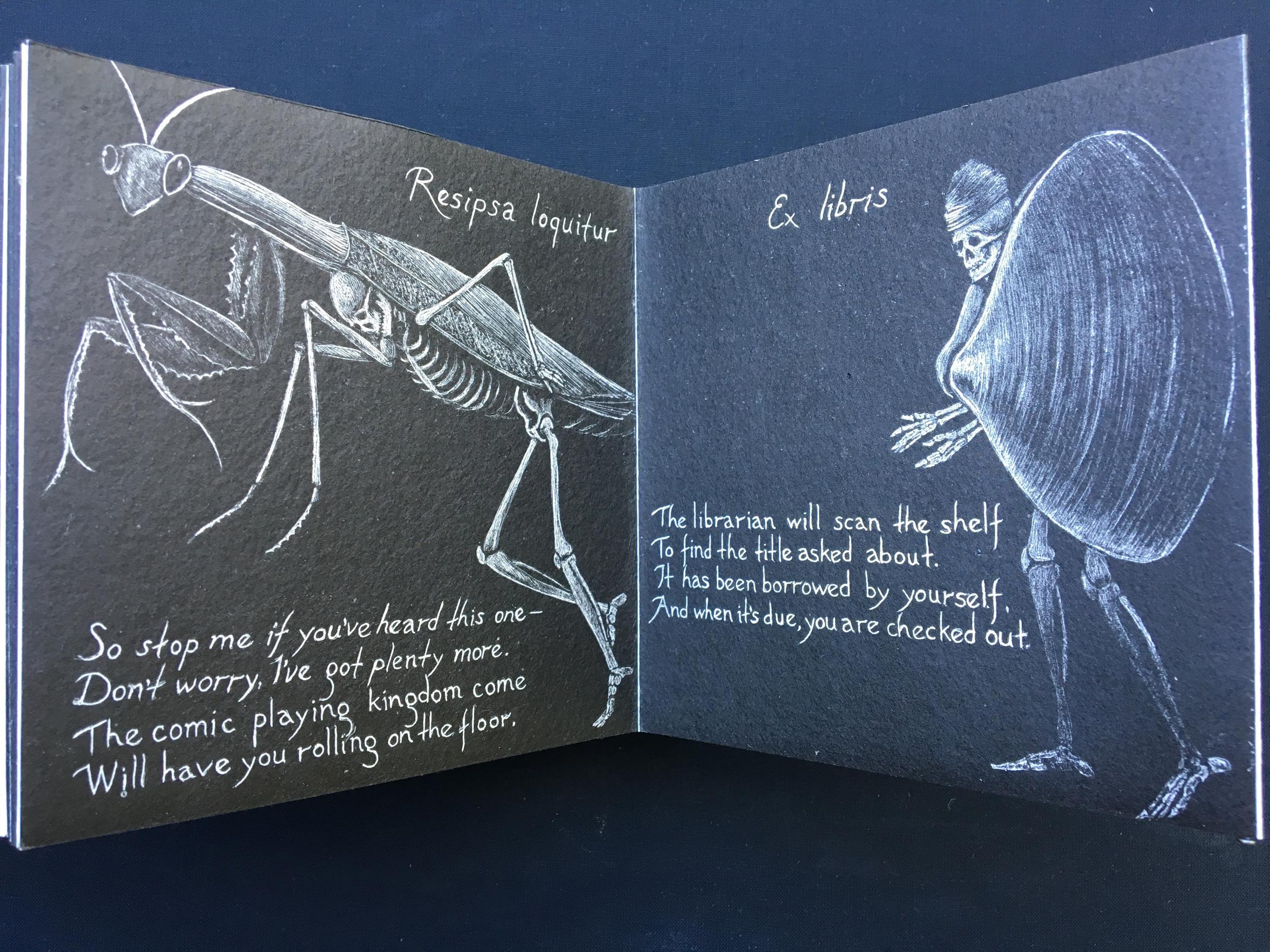Opera Mortis Mantis & clam-web.jpg