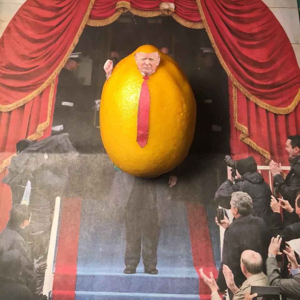 """1.22.17   The Great Lemon Installed...  """"Mr. Lemon, show us your taxes!""""  """"Taxes? I don't pay no stinking taxes!""""   #Lemonlaw  #Squeezethelemon  # Zesty"""