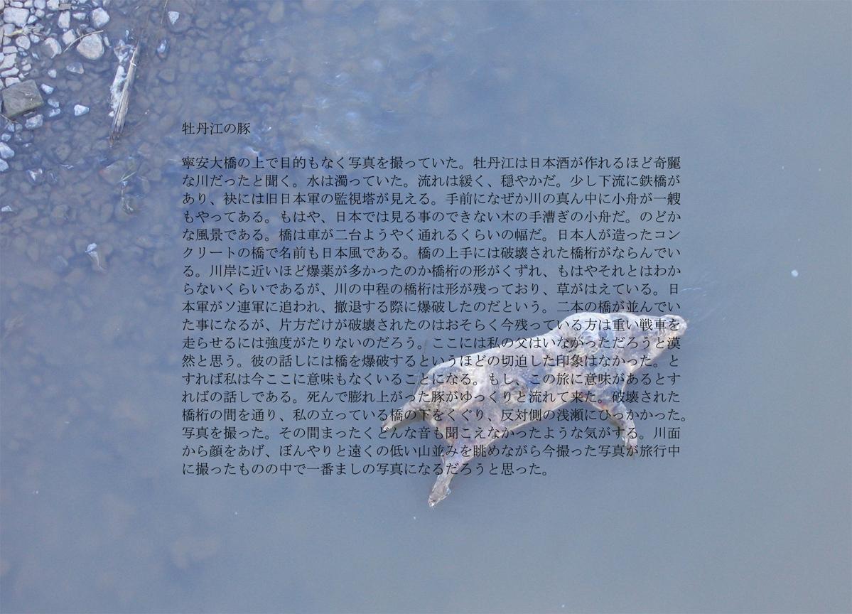 Dead Pig on Mudanjiang