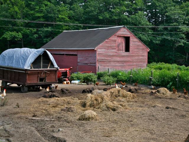Farm+.jpg