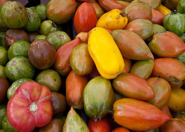 Tomatoes+multi-8939.jpg