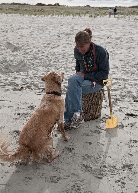 Crane+beach+dog-0006.jpg