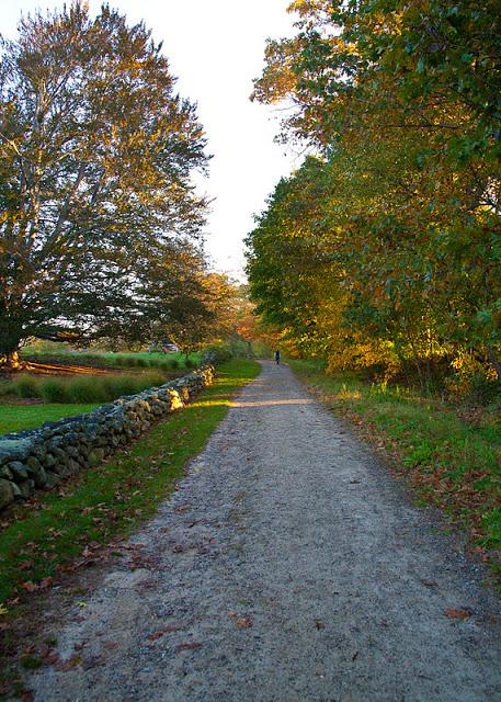 Estabrook+path-0201-2.jpg