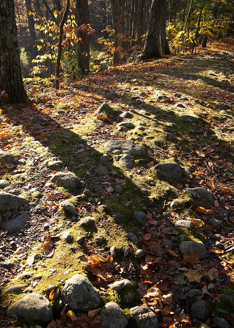 Stones+in+road-0227.jpg