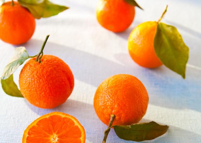 oranges+w+leavesorange+fennel+salad-029.jpg