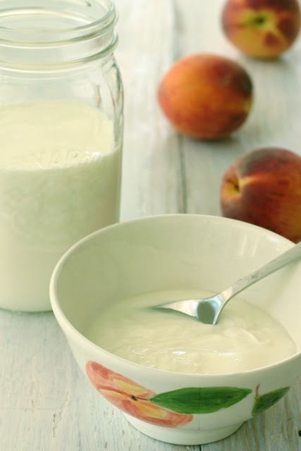 yogurt+w+peaches.jpg
