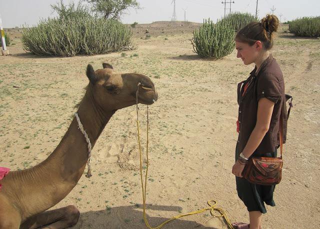 Marina+India+Camel.jpg