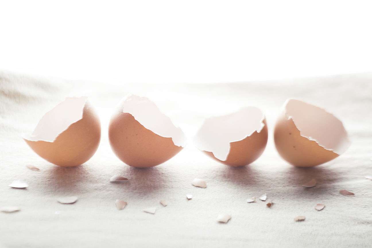 egg-texture.jpg