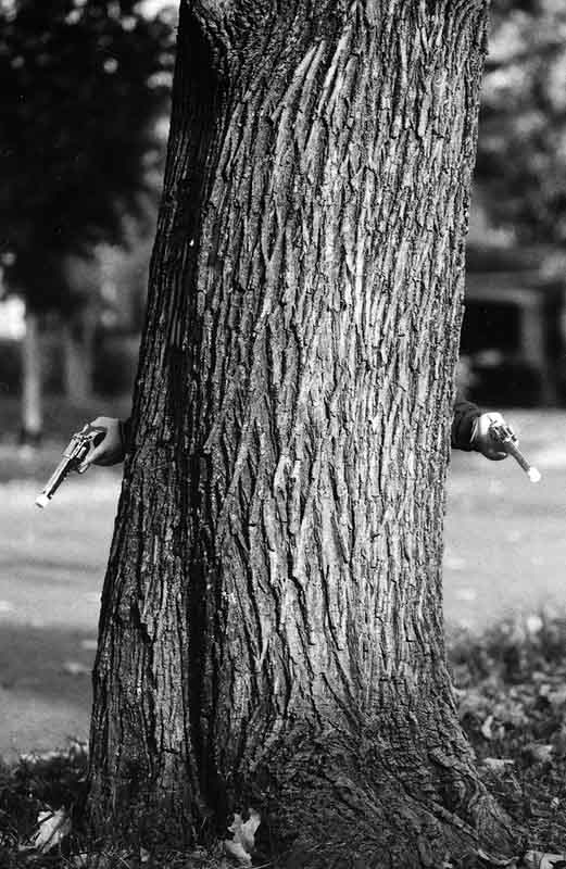 Tree guns.jpg