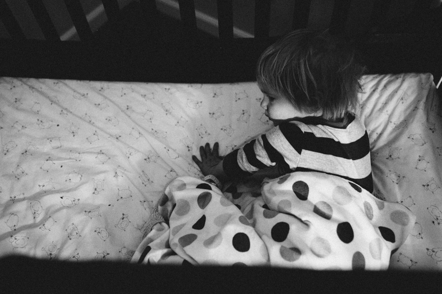 seattle-family-photographer-lambs-2014-f432d0325.JPG