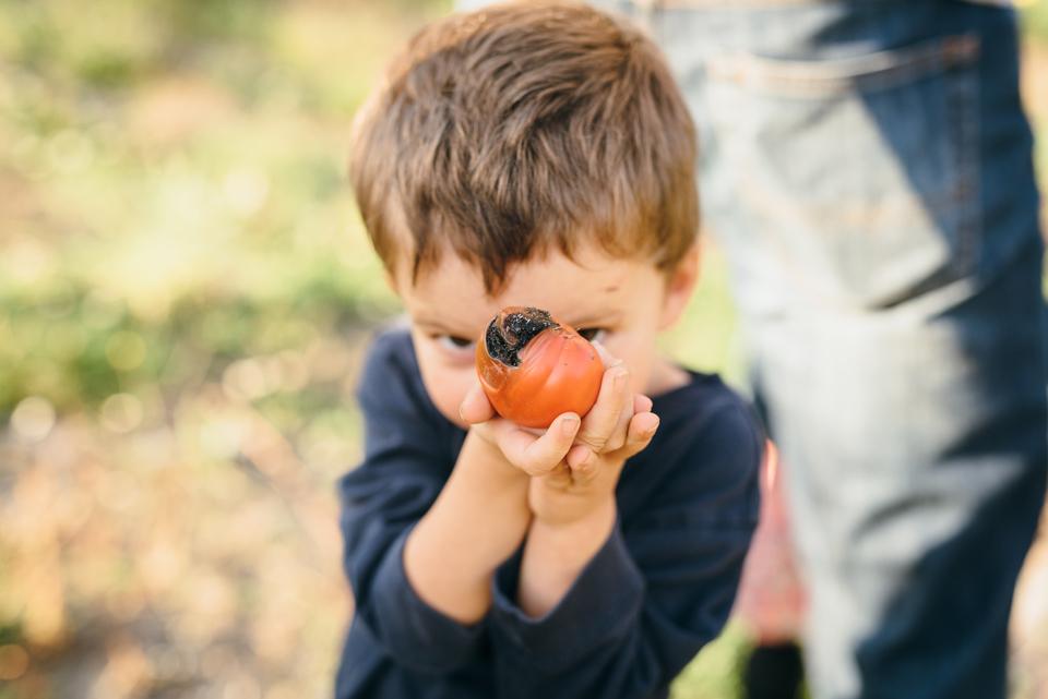 duvall-family-photographer-steph-family-summer-snoqulmie-valleyjtpa00178.JPG