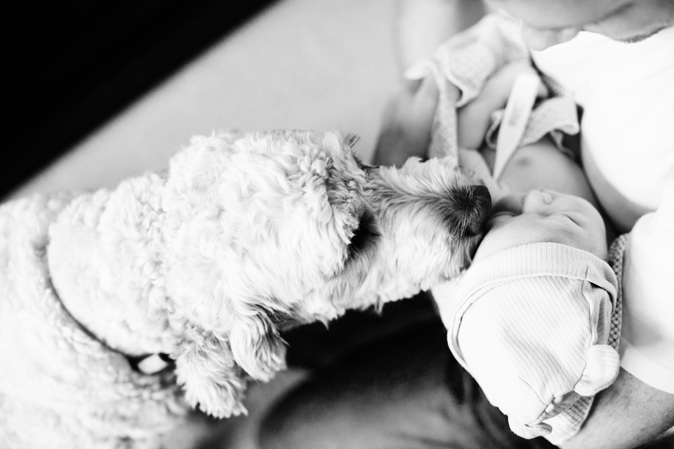 seattle-birth-photographer-jenn-tai-welcoming-baby-samjtpa00101.JPG