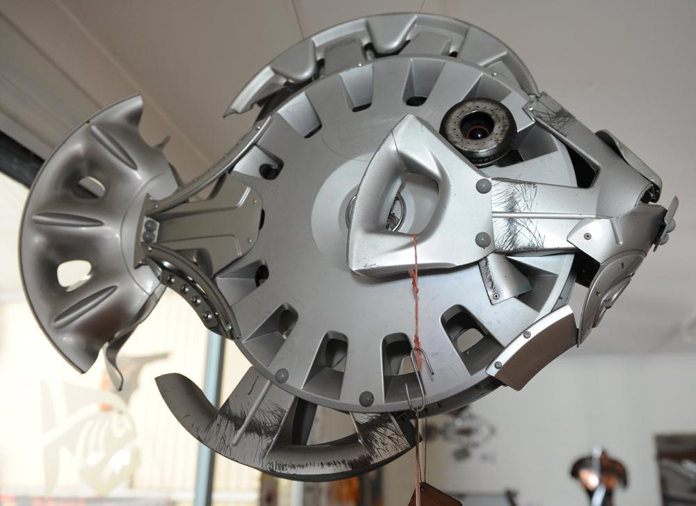 hubcap lion fish