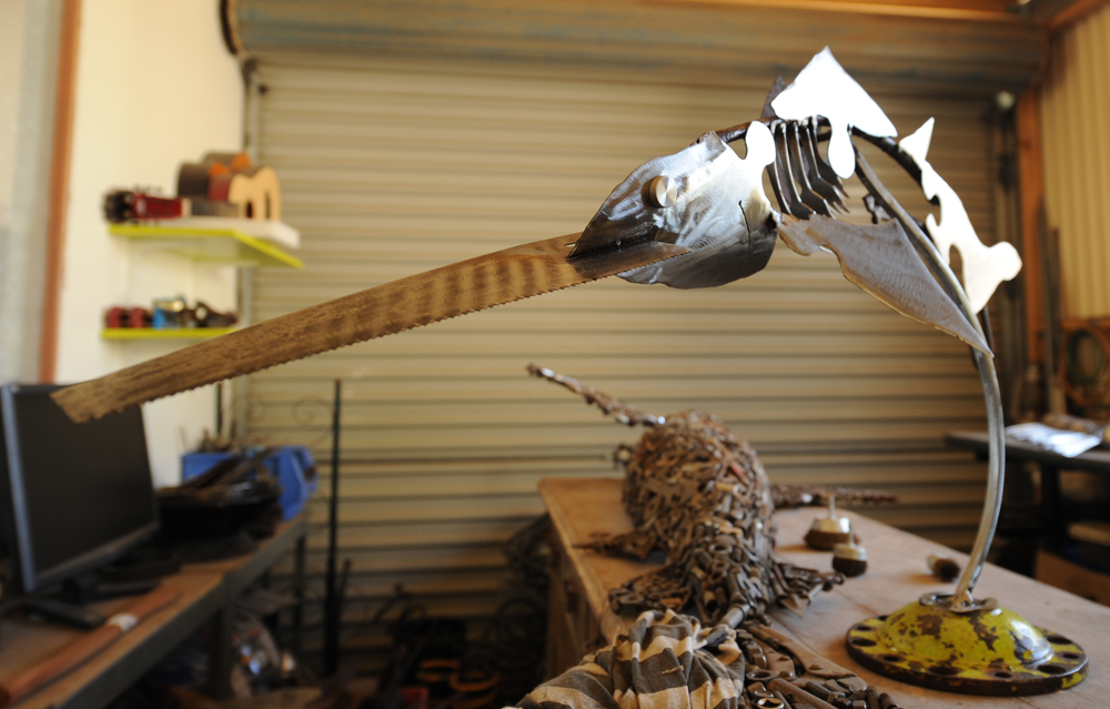 sweeping sawfish