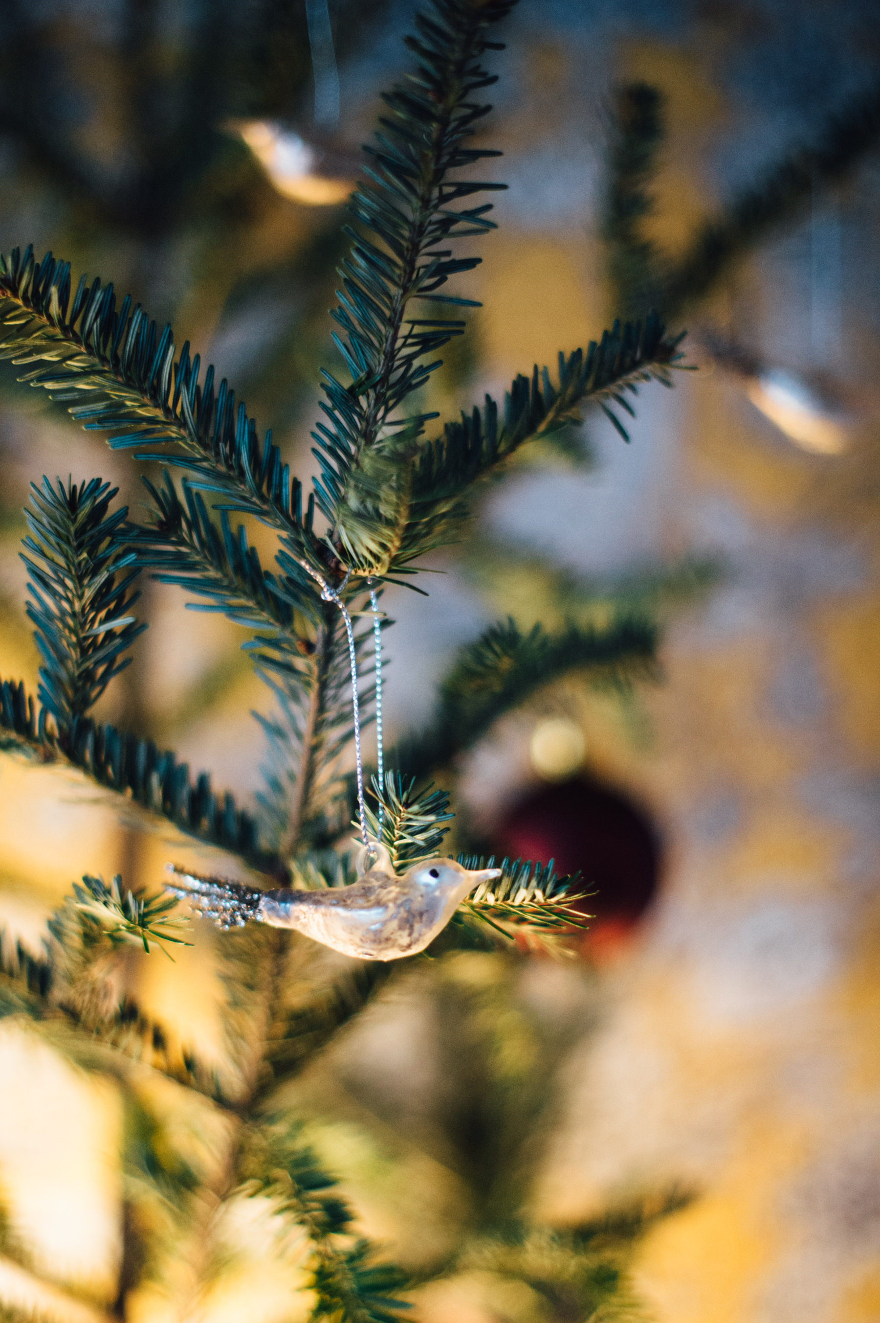 The mini Glass bird ornaments from Neatly Nested Design & Decor add a little sparkle to your Charlie Brown Christmas tree. And in our case, went nicely with Li's wallpaper.