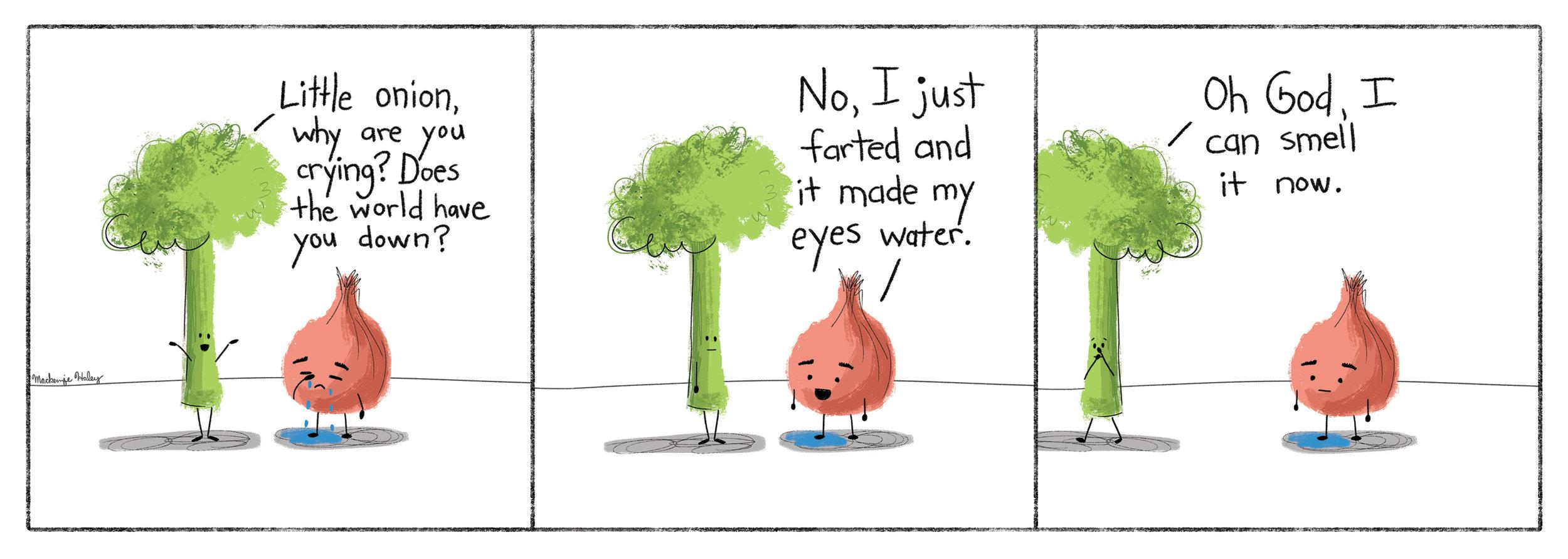 onion comic.jpg