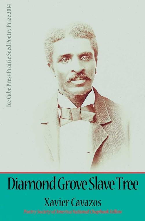 diamond-grove-slave-tree-xavier-cavazos-web-cover.jpg