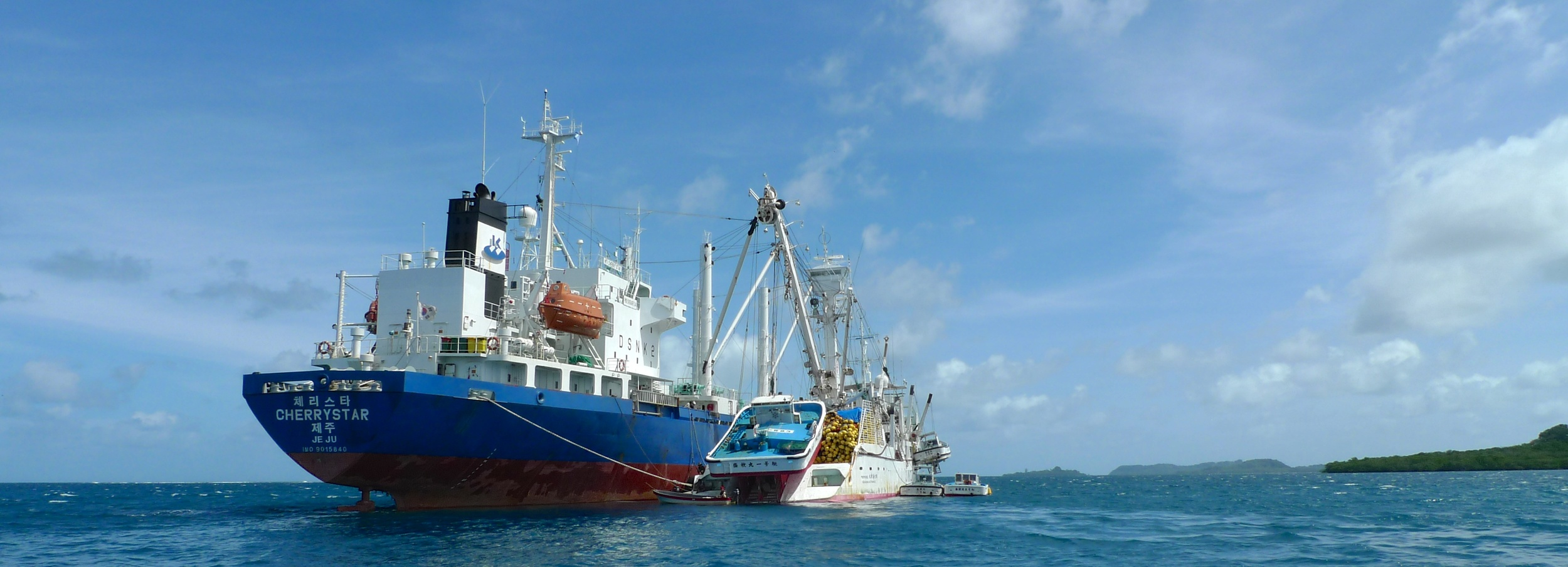 How well does the flag state know how much Tuna was transhipped?