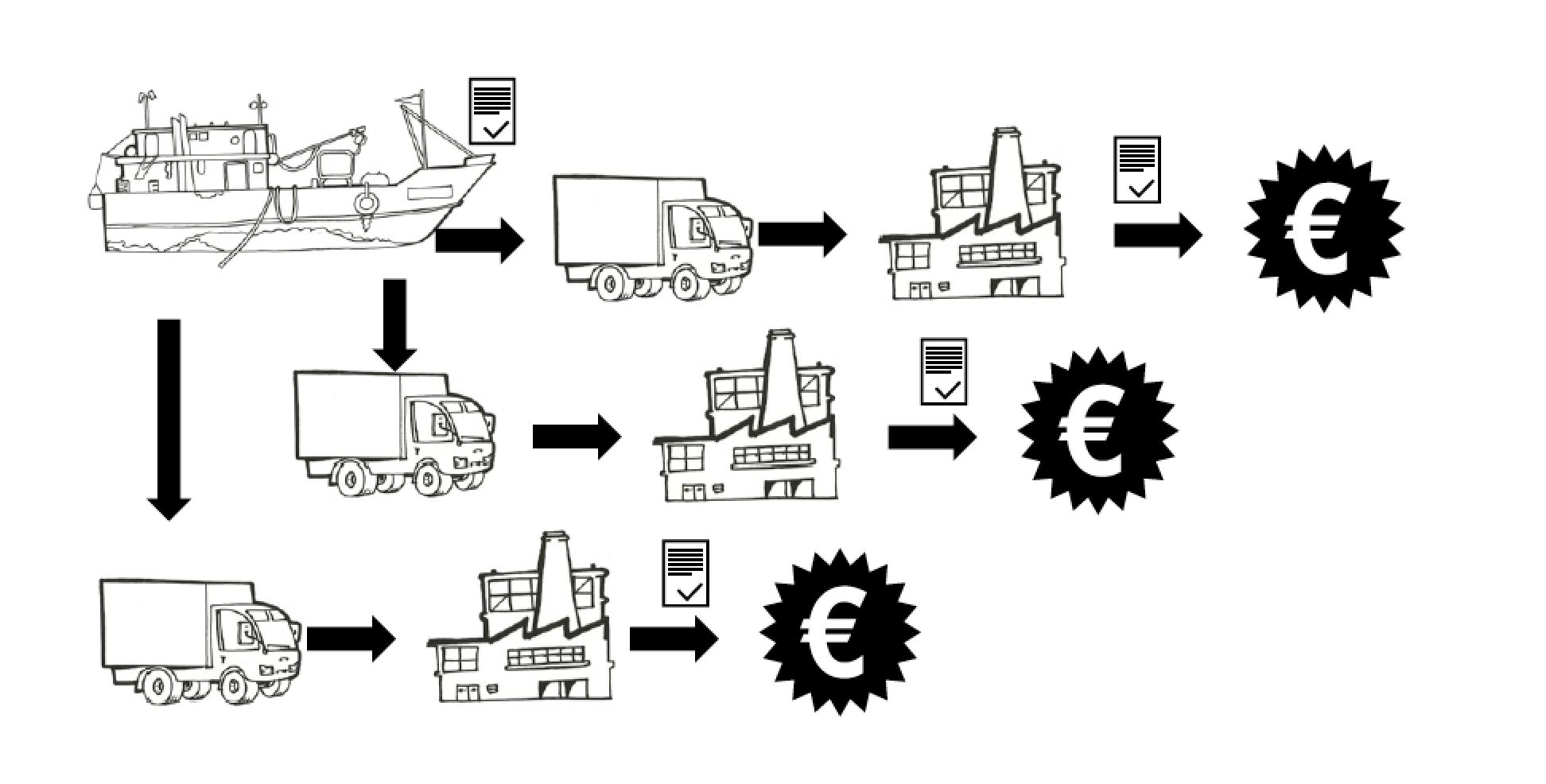 illustration for a EU IUU CCS manual I did for Indonesia in 2014