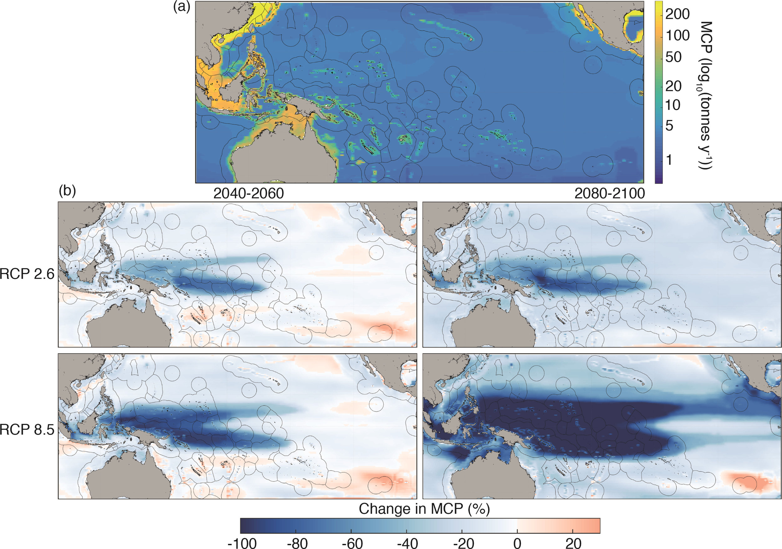 Maps of projected Maximum Catch Potential (MCP) during different periods. (a) Mean MCP for the 1980–2000 reference period. (b) Change in MCP during 2040–2060 and 2080–2100 under Representative Concentration Pathways (RCPs) 2.6 and 8.5 in comparison to the reference period.