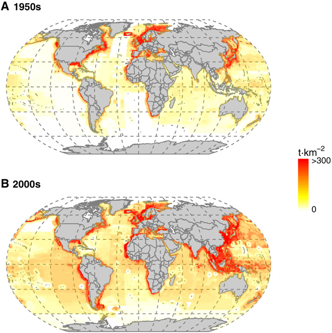 Fig. 4 Spatial mapping of the distribution and intensity of industrial fishing catch. Mean industrial fisheries catch in metric tons per square kilometer by catch location during the ( A ) 1950s and ( B ) 2000s.