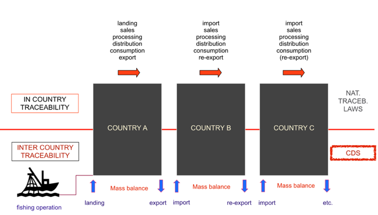 Figure 1: Each country is a black box that process its own internal traceability system, country A has the responsibility of determine legality at landing/transhipment and initial volumes determination, everyone else needs to avoid fish laundering by checking the volumes per species it receives versus the ones sent from the last country, all the way to the volumes and species legally unloaded from the vessel.