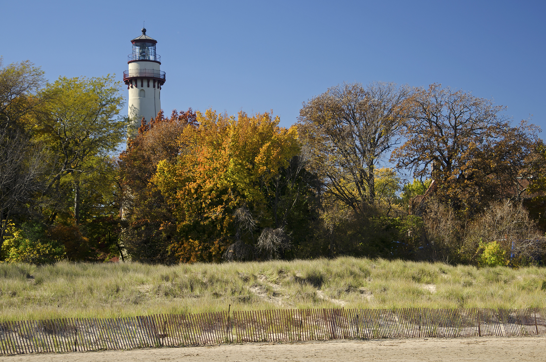Fall color near the Grosse Point Lighthouse. Image by  Tom Gill .