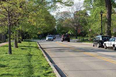 1970s   City traffic engineers proposed widening Forest Avenue to four lanes, calling for the removal of the mature elm trees that lined the avenue from Main Street to Northwestern University. SEA successfully organized residents to overturn the proposal so that the natural and architectural integrity of the area was ultimately preserved.