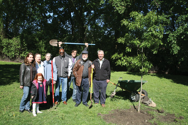 """2013   In cooperation with the Evanston Public Works and Forestry departments, SEA planted a tree in each of the city's nine wards, and was recognized by the City Council for """"helping to make Evanston a naturally beautiful place to be enjoyed for generations to come."""""""