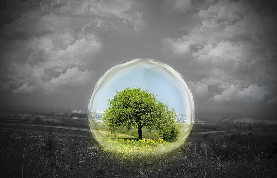IF@Nature under glass.jpg