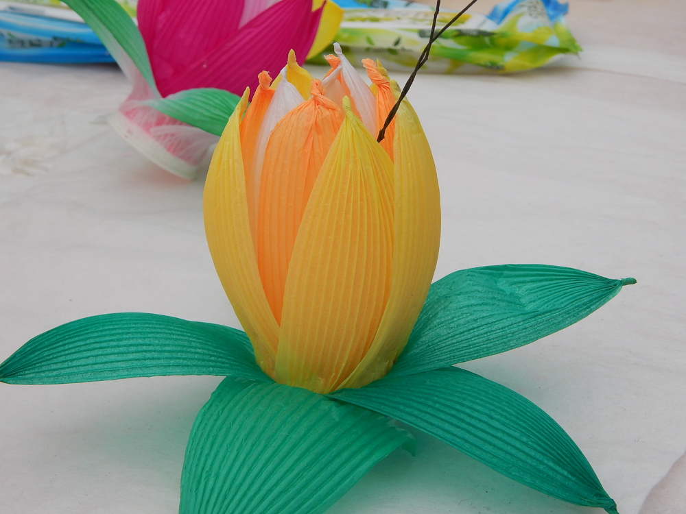 CG's flower.