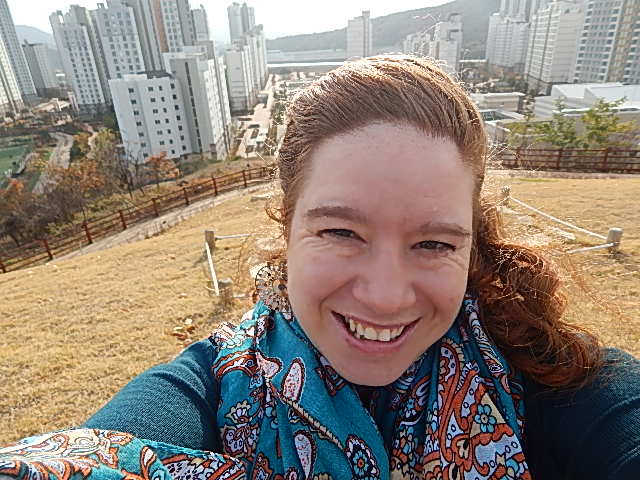 View from the hill in Sejong