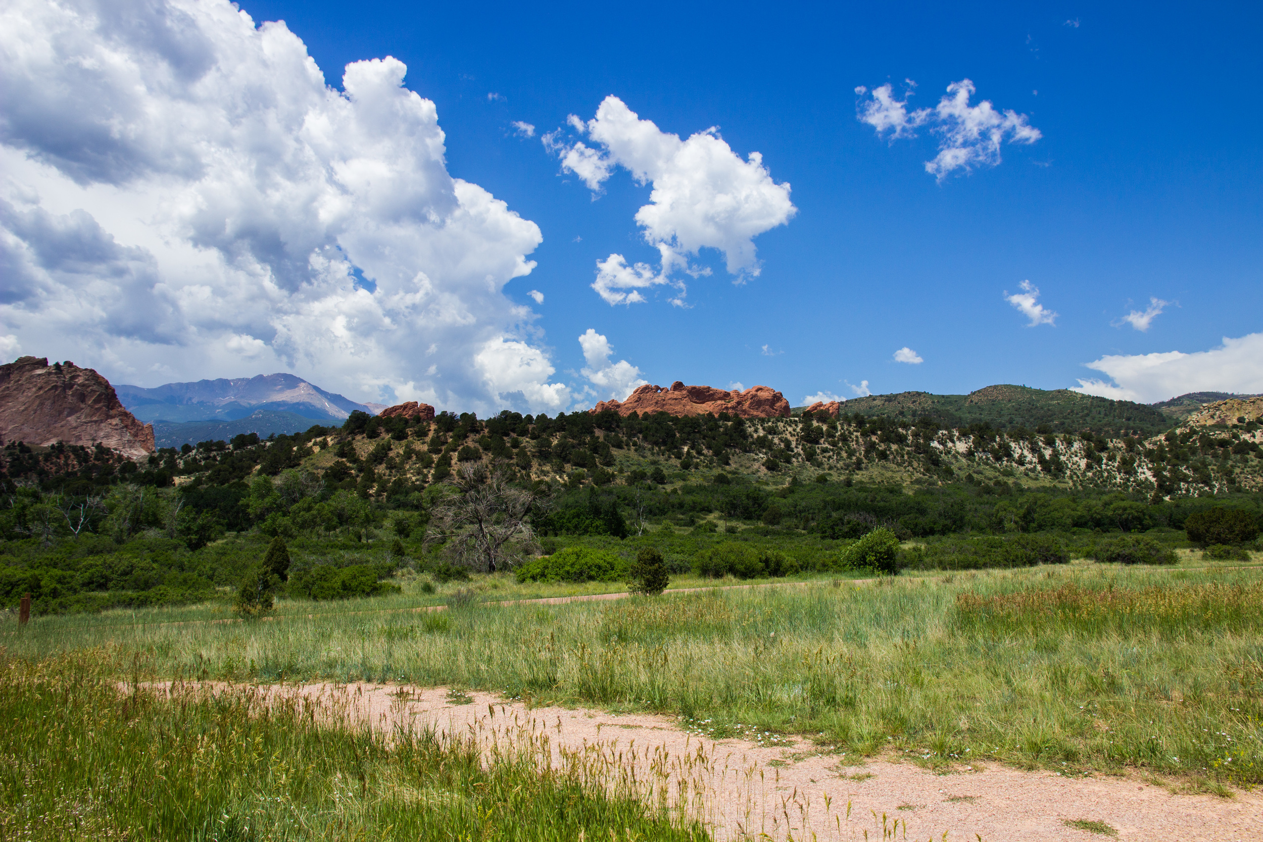 Colorado-6218.jpg