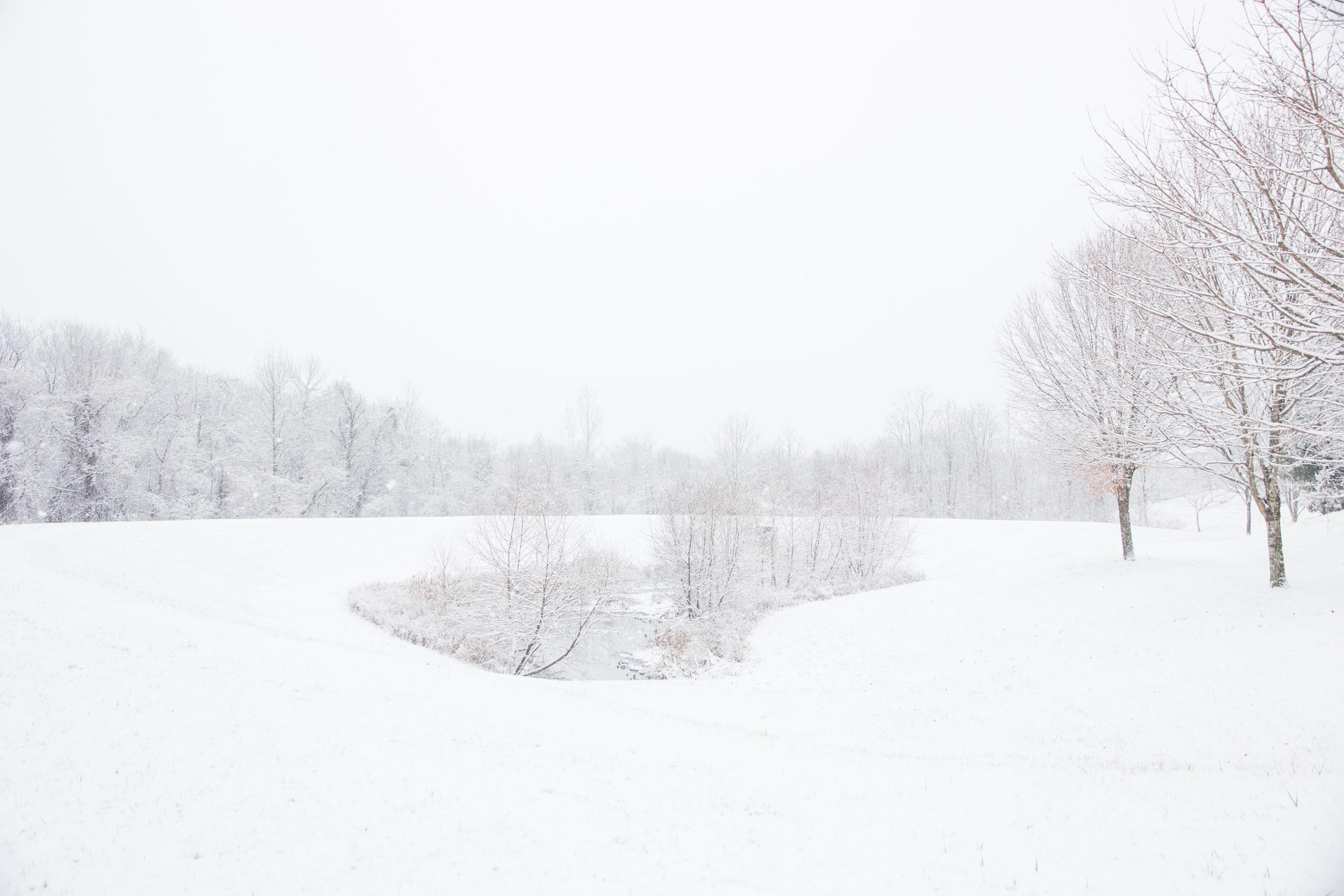Snow-0087.jpg