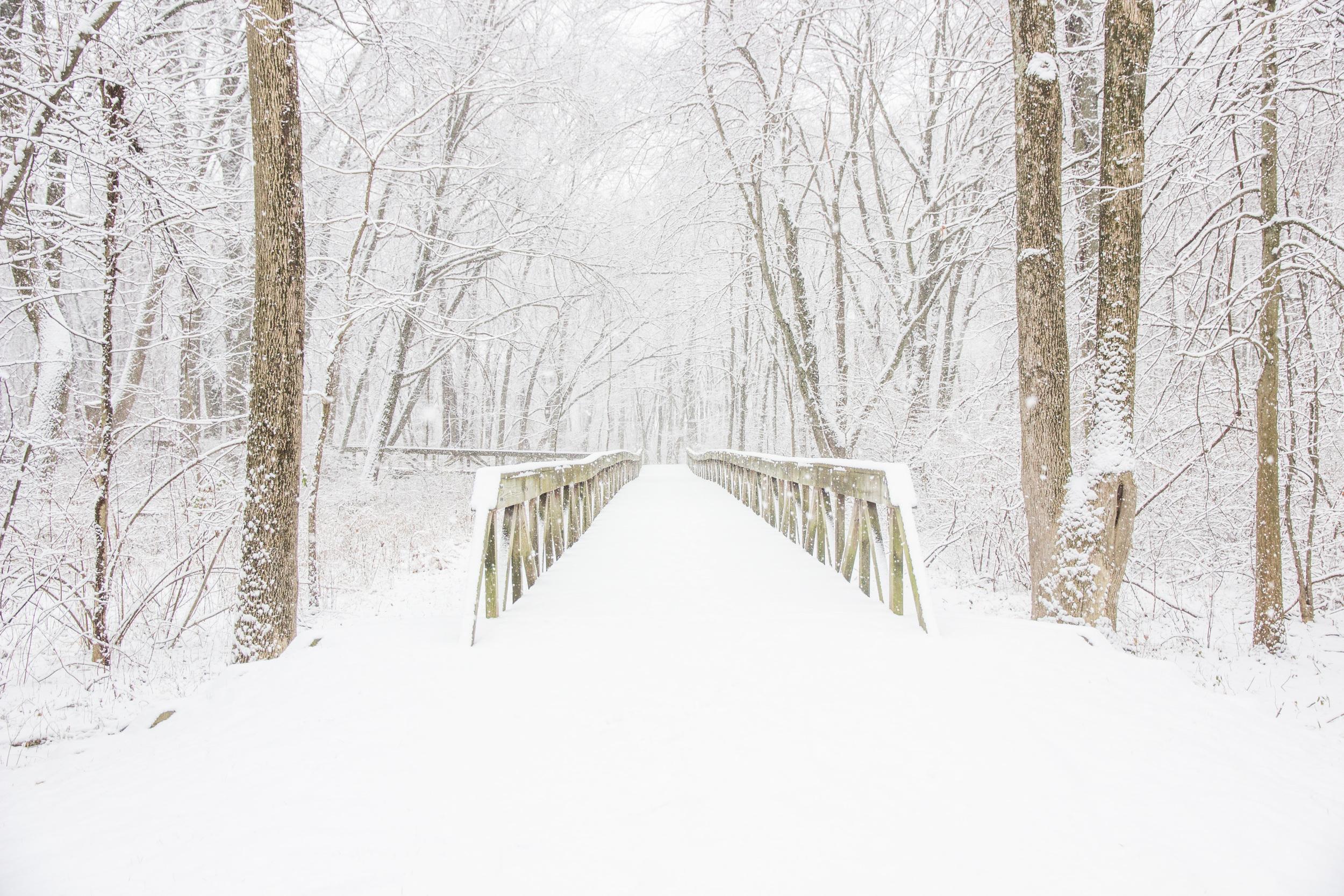 Snow-0080.jpg