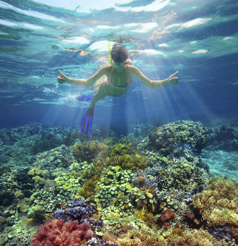 iStock_000030404822Medium caribbean women snorkeling.jpg