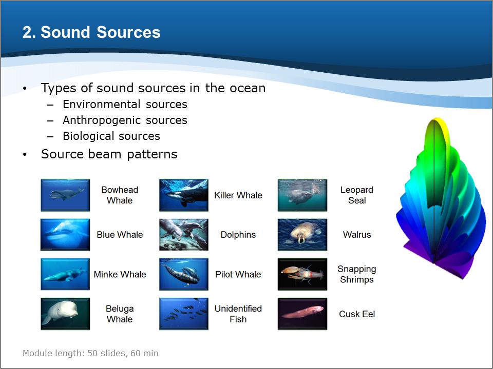 Bioacoustics Training Course: Sound Sources
