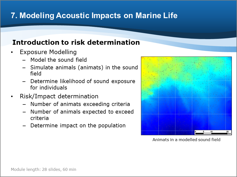 Bioacoustics Training Course: Modeling Acoustic Impacts on Marine Life