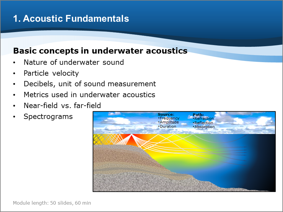 Bioacoustics training course slide for Acoustics Fundamentals module